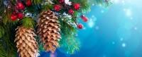 Extra markt op Tweede Kerstdag